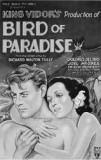 Bird-of-paradise-1932