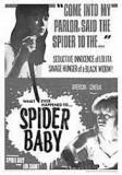 Spider-baby-19
